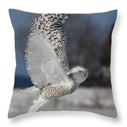 Snowy Angel Throw Pillow