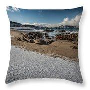 Snowy Beach Throw Pillow