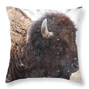 Snowy Bison Throw Pillow