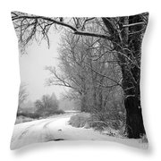 Snowy Branch Over Country Road - Black And White Throw Pillow