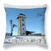 Snowy Cerchov Throw Pillow