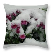 Snowy Chrysanthemums Throw Pillow