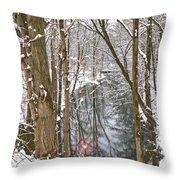 Snowy Creek Throw Pillow