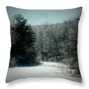 Snowy Creek Bend Throw Pillow