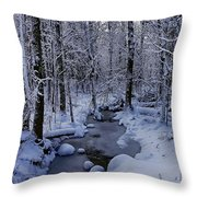 Snowy Creek Throw Pillow