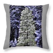 Snowy Day Pine Tree Throw Pillow