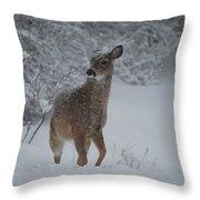 Snowy Doe Throw Pillow