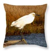 Snowy Egret 1 Throw Pillow