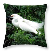 Snowy Egret 12 Throw Pillow