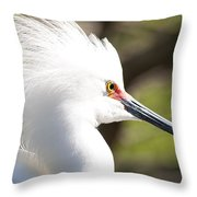 Snowy Egret Closeup Throw Pillow