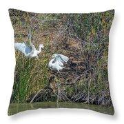 Snowy Egret Confrontation 8664-022018-1 Throw Pillow