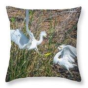 Snowy Egret Confrontation 8664-022018-1cr Throw Pillow