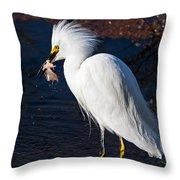 Snowy Egret Eating Fish Throw Pillow