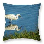 Snowy Egret Feeding  Throw Pillow