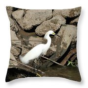 Snowy Egret Fishing Throw Pillow