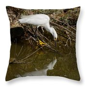 Snowy Egret Fishing From Branches Throw Pillow