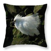 Snowy Egret Fluffy Throw Pillow