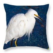 Snowy Egret In Afternnon Light Throw Pillow