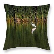 Snowy Egret In Marsh Reinterpreted Throw Pillow