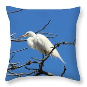 Snowy Egret In Nesting Area Throw Pillow