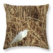 Snowy Egret In Tall Grasses Throw Pillow