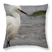 Snowy Egret In The Wind Throw Pillow