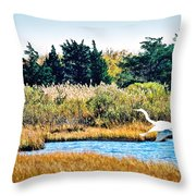 Snowy Egret-island Beach State Park N.j. Throw Pillow