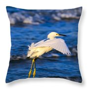 Snowy Egret Lands In Surf Throw Pillow