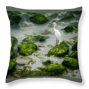 Snowy Egret On Mossy Rocks Throw Pillow