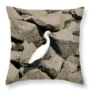 Snowy Egret On The Rocks Throw Pillow