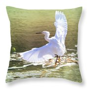 Snowy Egret Over Golden Pond Throw Pillow