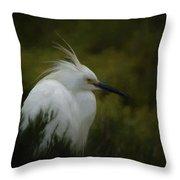 Snowy Egret Portrait Da Throw Pillow