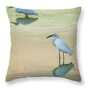 Snowy Egret Reflections  Throw Pillow
