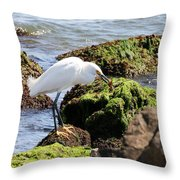 Snowy Egret  Series 2  1 Of 3  The Catch Throw Pillow