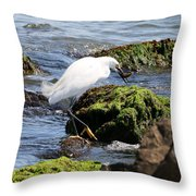 Snowy Egret  Series 2  2 Of 3  Preparing Throw Pillow