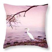 Snowy Egret Solitude Throw Pillow