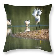 Snowy Egret Stretch 4280-080917-2cr Throw Pillow