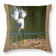 Snowy Egret Stretch 4280-080917-3cr Throw Pillow