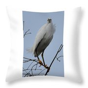 Snowy Egret  Watching Throw Pillow