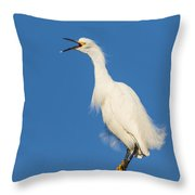 Snowy Egret With Attitude Throw Pillow