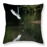 Snowy Egrets 080917-4290-1 Throw Pillow