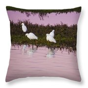 Snowy Egrets At Sunset Throw Pillow