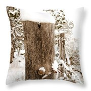 Snowy Fence Post Throw Pillow