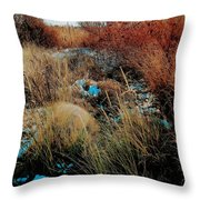 Snowy Field Throw Pillow