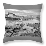 Snowy Fogged In Cove Throw Pillow