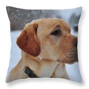Snowy Golden Lab Throw Pillow