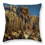 Snowy Hobart Bluff  Throw Pillow