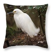 Snowy In The Marsh Throw Pillow