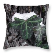 Snowy Ivy Throw Pillow