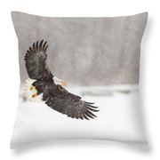 Snowy Landing Throw Pillow